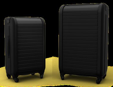 Trunkster Carry On and Checked Luggage